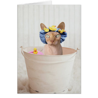 Add Your Own Text: Bath Time Card