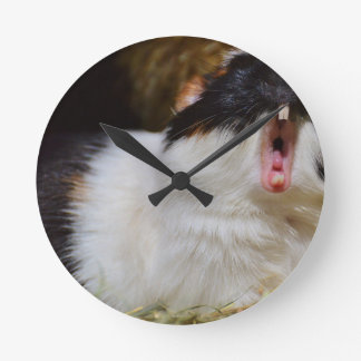 Add Your Own Text Funny Guinea Pig Clock
