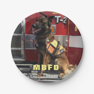 Add Your Photo Fireman's Celebration Paper Plate