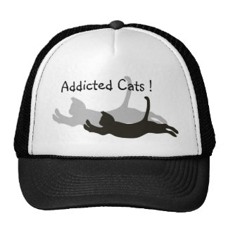 Addicted Cats ! Mesh Hats