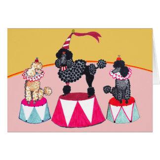 Addie's Circus Poodles Notecard