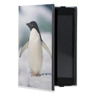 Adelie penguin, close-up case for iPad mini