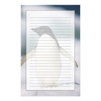 Adelie penguin, close-up personalised stationery
