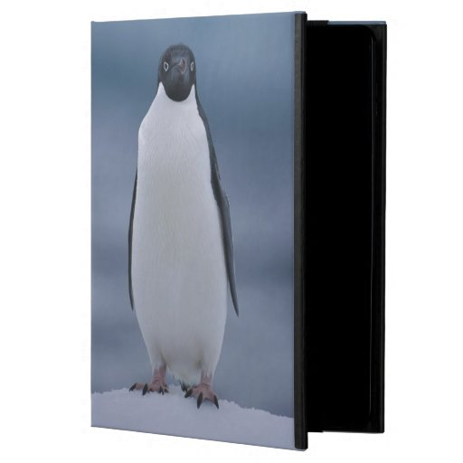 Adelie Penguin on Ice iPad Air Covers