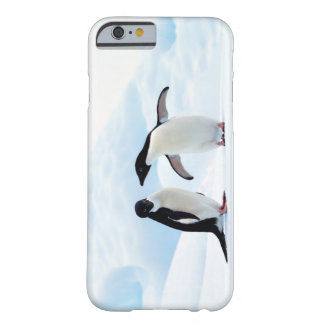 Adelie Penguins Barely There iPhone 6 Case
