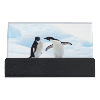 Adelie Penguins Desk Business Card Holder