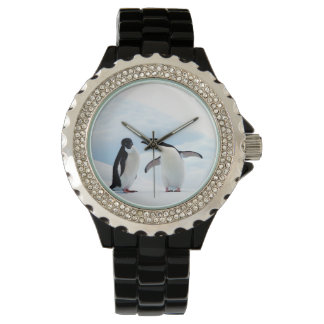 Adelie Penguins Wrist Watch