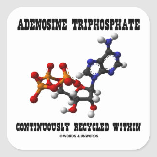 Adenosine Triphosphate Continuously Recycled (ATP) Square Sticker