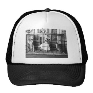 Adgie and Her Trained Lions1897 Mesh Hat