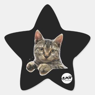 Adhesive Star Sticker