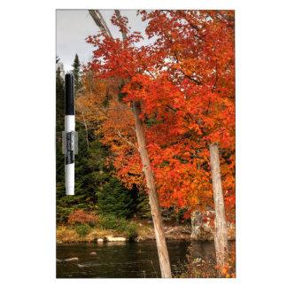 Adirondack Autumn Dry Erase Board