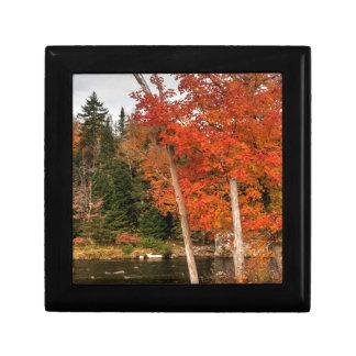 Adirondack Autumn Gift Box