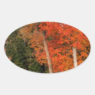 Adirondack Autumn Oval Sticker