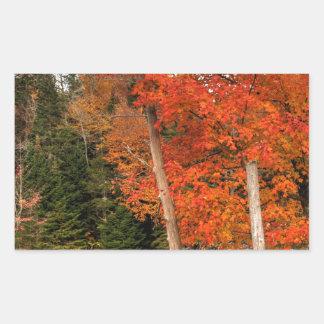 Adirondack Autumn Rectangular Sticker