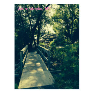 Adirondack Mountain Scene Postcard