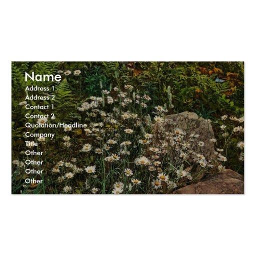 Adirondack mountain wild flowers rare Photochrom Business Card Templates