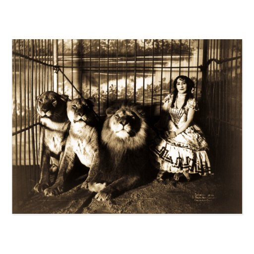 Adjie and the Lions 1899 Vintage Circus Post Cards