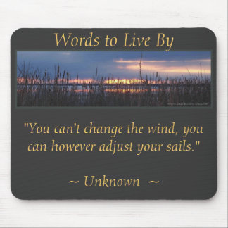 ADJUST YOUR SAILS - Marsh Sunset Mouse Pad