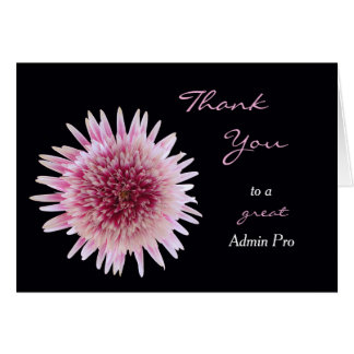 Administrative Professionals Day Card Gerber Daisy