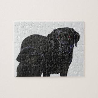 Admiration in Puppy's Eye's - Black Labrador Jigsaw Puzzle