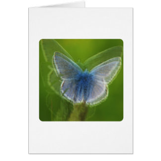 Adonis Blue Butterfly Blurred Greeting Card