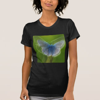Adonis Blue Butterfly Blurred Tee Shirts