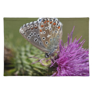 Adonis blue butterfly (Polyommatus bellargus) Placemat
