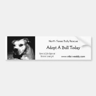 Adopt a Bull Bumper Sticker