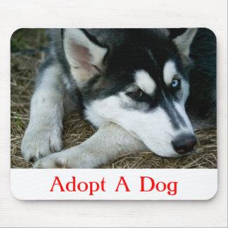 Adopt a Dog Siberian Husky Mousepad