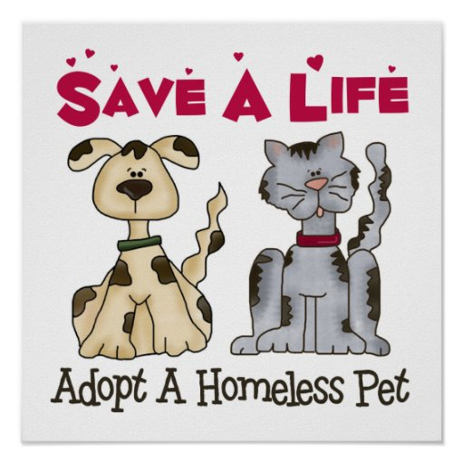 Adopt A Homeless Pet Poster