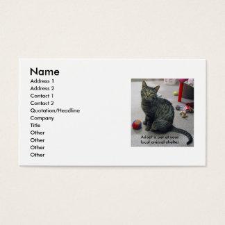 Adopt a Pet Profile Card
