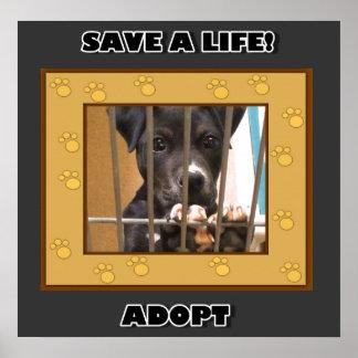 Adopt a puppy poster