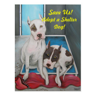 Adopt a Shelter Dog Postcard