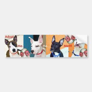 Adopt Me Me Me Bumper Sticker