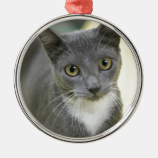 ADOPT Pepper Silver-Colored Round Decoration