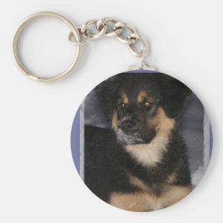 Adoptable Shepherd Puppy Basic Round Button Key Ring