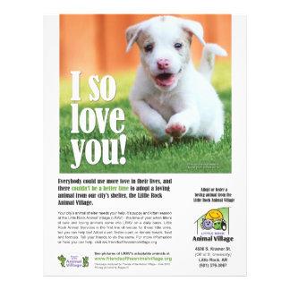 pet adoption flyer template .