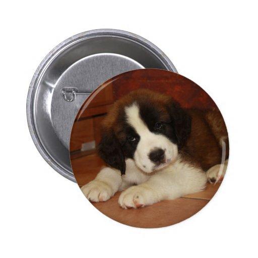 Adorable and Sweet St. Bernard Puppy Pinback Buttons