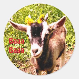 Adorable Baby Goat Says Baaa Baaa Round Sticker