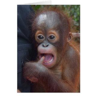 Adorable Baby Orangutan Sucks Thumb Greeting Card
