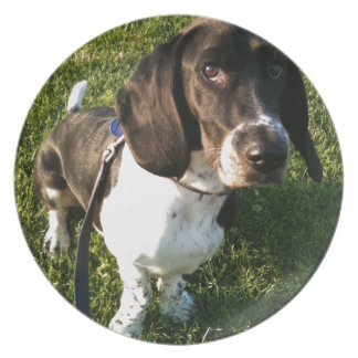 Adorable Basset Hound Snoopy Plate