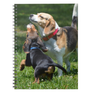Adorable Beagle Puppy and Mom Spiral Notebook