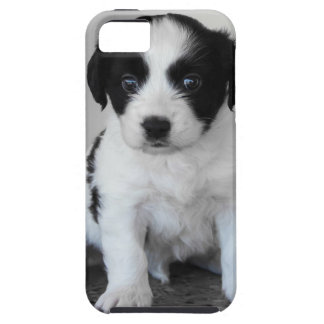 Adorable Black and White Puppy Tough iPhone 5 Case