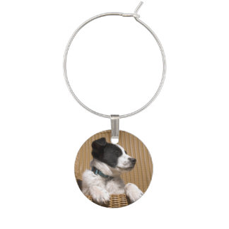 Adorable Black and White Sleeping Puppy Wine Glass Charm