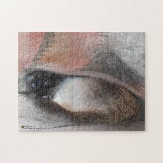 Adorable Blue EyedCat Peeking From Under A Blanket Jigsaw Puzzle