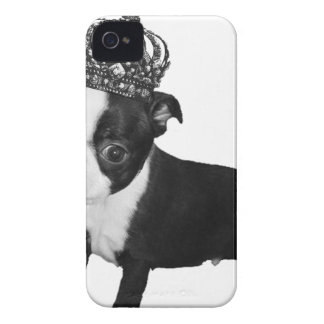 Adorable BOSTON TERRIER Puppy DOG Crown iPhone 4 Case-Mate Cases