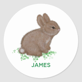 Adorable Bunny in Clover with Name Classic Round Sticker