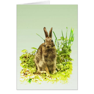 Adorable Bunny Rabbit in Green Grass Blank Card
