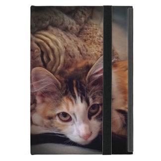 adorable calico kitten iPad mini case