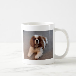 Adorable Cavalier King Charles Spaniel Coffee Mug